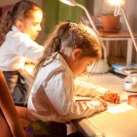Профессиональные настольные лампы для детей — основа эффективного обучения